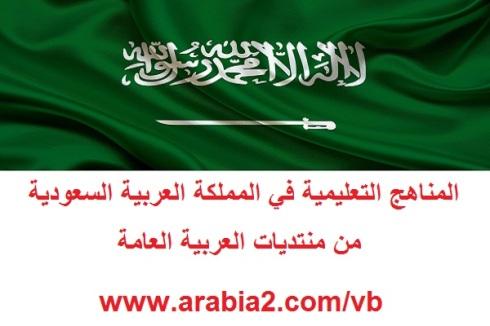 اذاعة عن رؤية المملكة العربية السعودية 2030 1461835286751.jpg